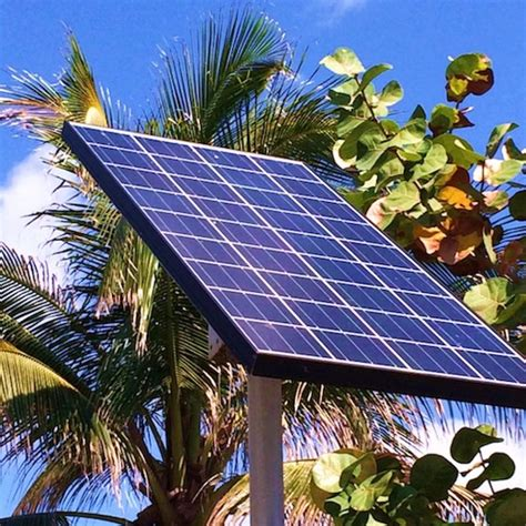 solar panels florida poll shows solar power amendment backed by utilities gets