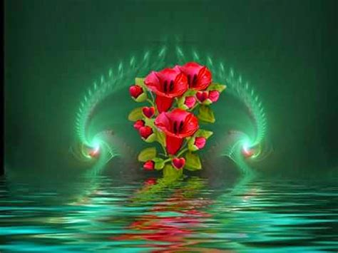 imagenes lindas de rosas brillantes ramos de flores para cumplea 241 os part 25