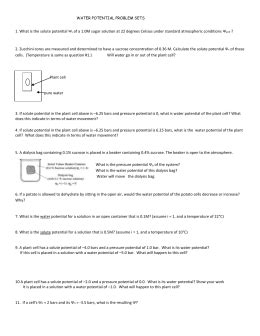 water potential worksheet ap water potential sle questions