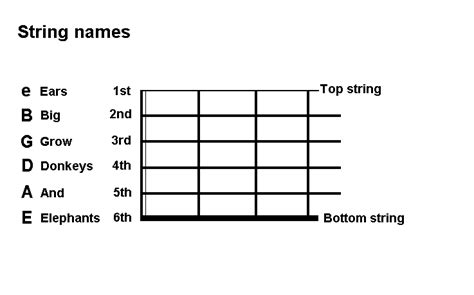 String Names - gallery acoustic guitar string names
