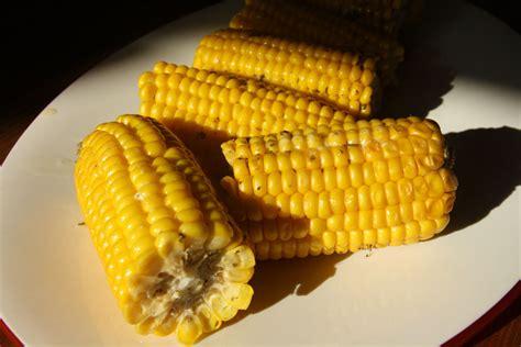 smoked corn on the cob no ordinary homestead