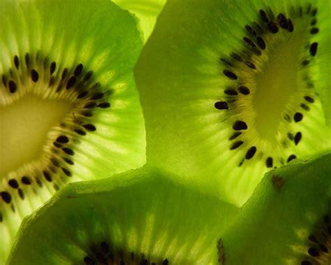 Green Kiwi Wallpaper | kiwi images kiwi hd wallpaper and background photos 31298271
