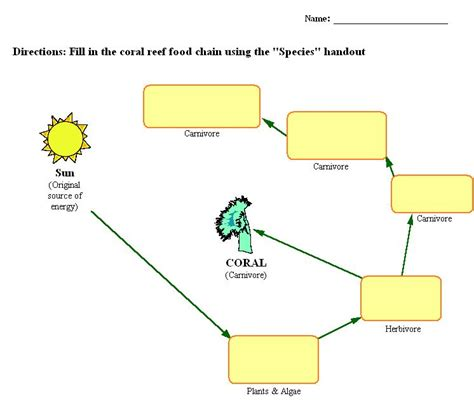 Food Chain Worksheet by Coral Reefs The S Treasure