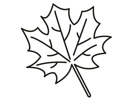 leaf coloring page leaf coloring pages free printable orango coloring pages