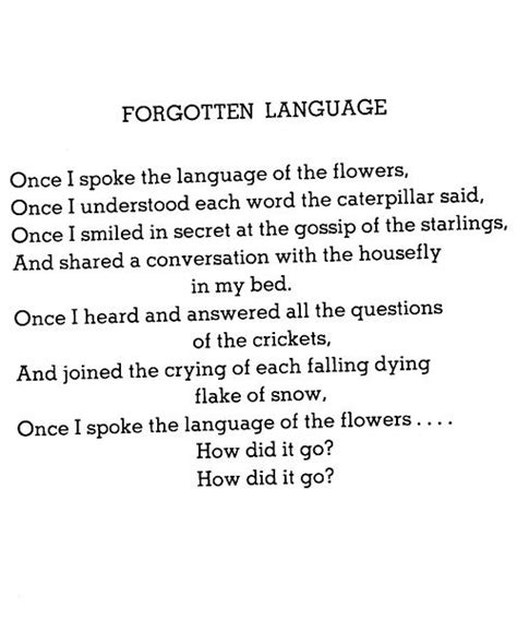 the things i forgot an ode to brain huffpost best 25 shel silverstein poems ideas on