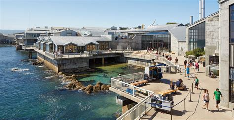 California Coast Mba by Image Gallery Monterey Bay Aquarium
