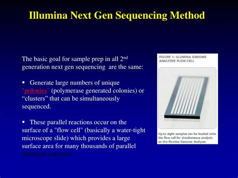 illumina sequencing method ppt chem 395 bioanalytical chemistry storrs connecticut