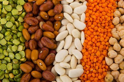 d protein india 11 best indian protein sources for vegetarians