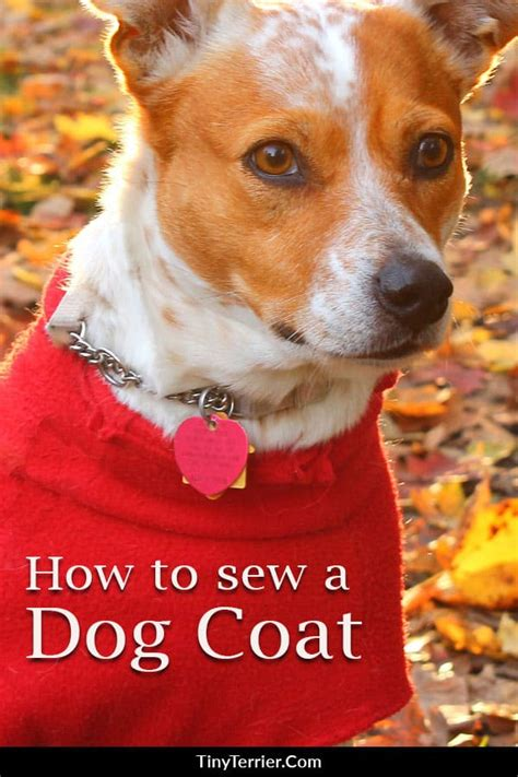 sewing projects  dogs diy dog sewing patterns