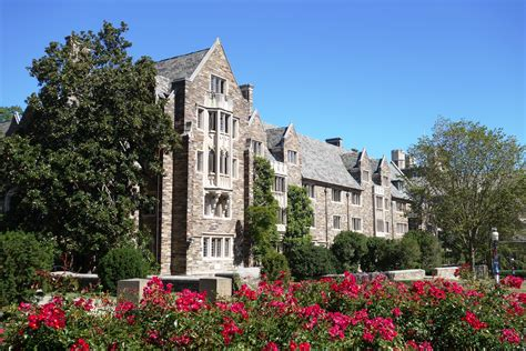 Princeton Mba College by Princeton Admissions Sat Scores And More
