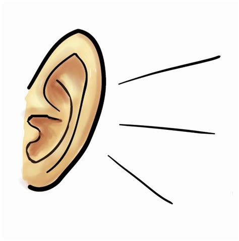 ear cartoon images