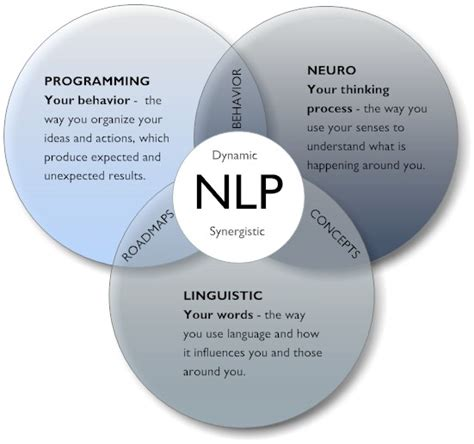 nlp language pattern neuro linguistic programming