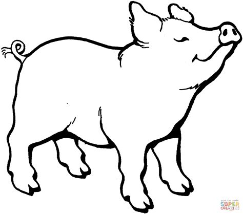 coloring page of a pig pig smells something coloring page free printable