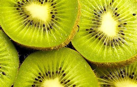 green kiwi wallpaper wallpaper kiwi widescreen hd wallpapers wallpaper