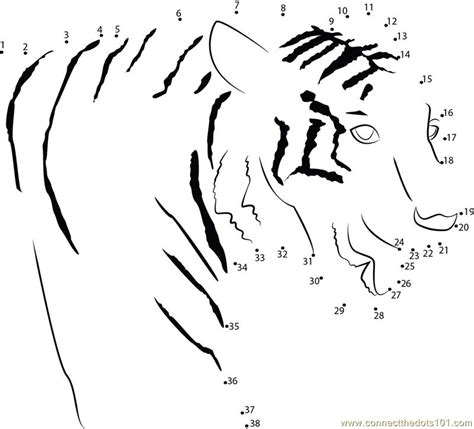 printable tiger dot to dot connect the dots tiger animals gt tiger dot to dots for