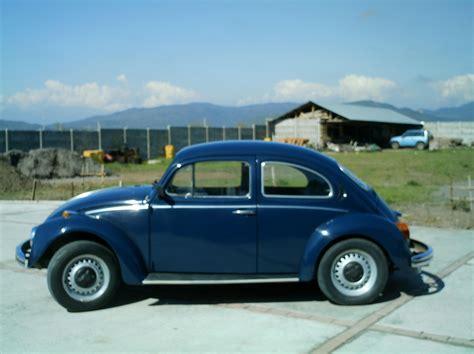 bug volkswagen 2007 1979 volkswagen beetle pictures cargurus