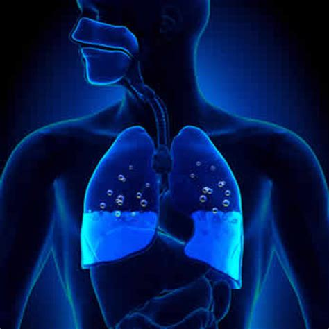 vasi polmonari edema polmonare acuto dott enrico ballor medicina