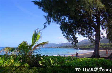 laie beach park oahu