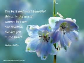 Best and most beautiful things in the world cannot be seen flowers