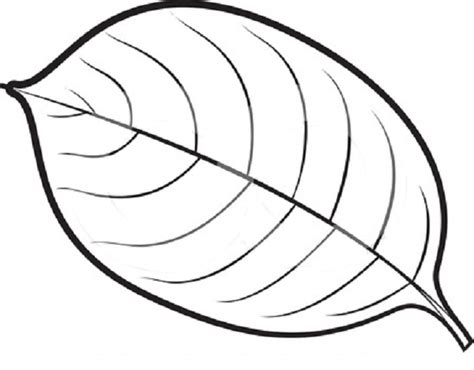 leaf coloring page leaves coloring part 4