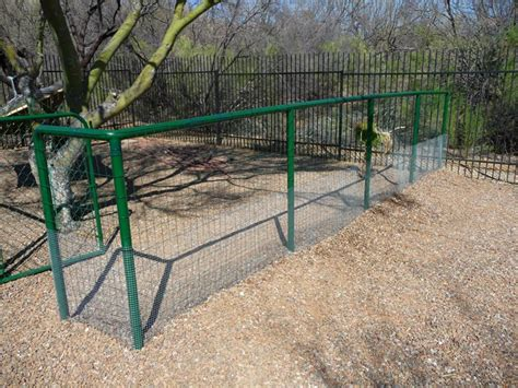 kennels tucson iron cages for sale in kerala autos weblog