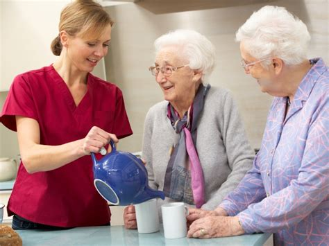 in home senior care sutton in home senior care