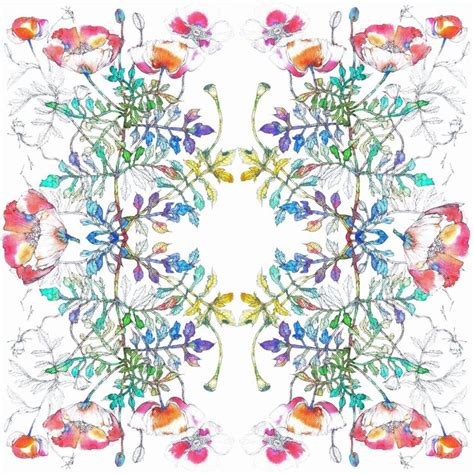 Pasmina Sofia Flower 17 best images about images by sofia perina miller on new print apple blossoms