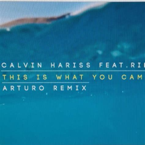 free download this is what you came for calvin harris feat rihanna this is what you came for