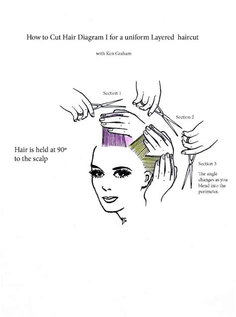 how to section someone 25 best ideas about hair cutting techniques on pinterest