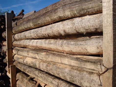robinie rundholz rundholz robinie markpine holzindustrie nahmitz