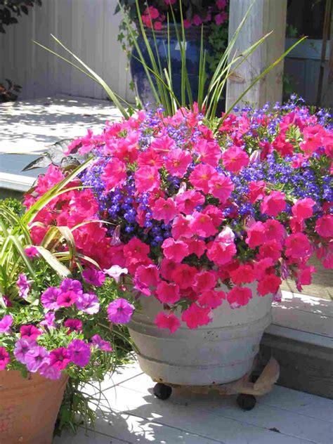 Flower Gardening In Pots Planters Amazing Container Flower Gardening Container Flower Gardening Best Flowers For Pots