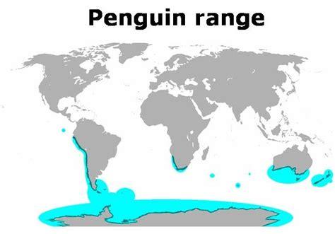where do penguins live map where do penguins live the garden of eaden