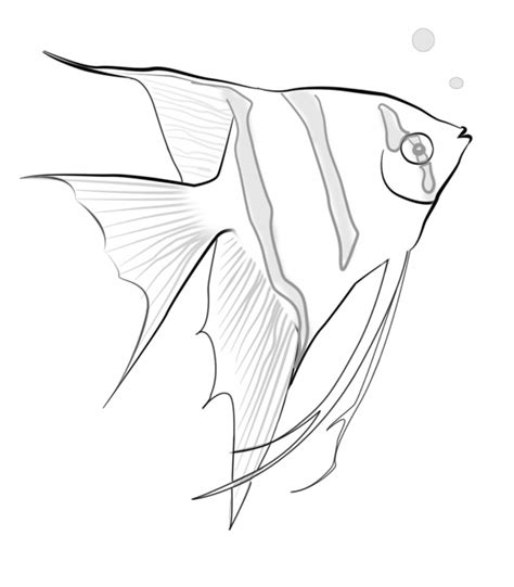 coloring page tropical fish fish coloring child coloring