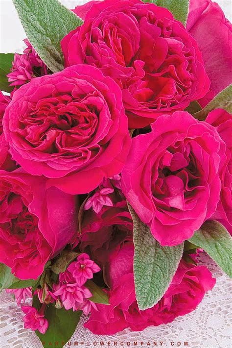 Parfum Flower kate 014 parfum flower company