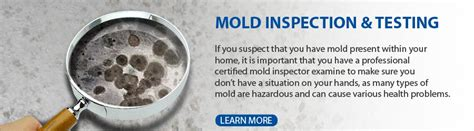 mold inspection image gallery mold inspection