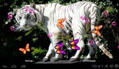 bengal tiger  wallpapers android apps  google play