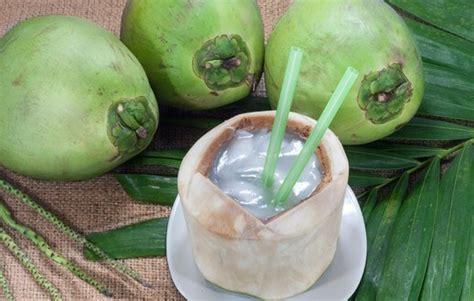 Special Chitosan Tiens Obat Herbal Sakit Maag Akut Dan Kronis Asam Lam manfaat air kelapa untuk mengobati maag spesialis obat herbal
