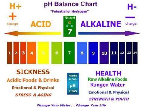 ph chart list of alkaline foods the ph balanced diet in5d