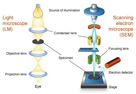 scanning electron microscope s 3700n hitachi high technologies