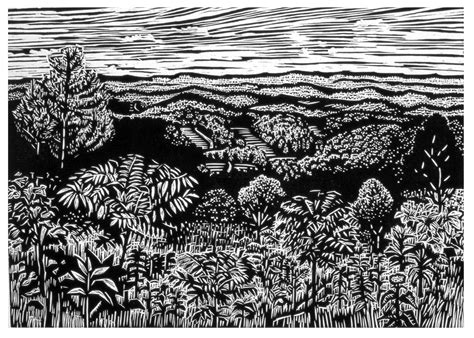 Black And White Wood north carolina woodcuts mollie doctrow