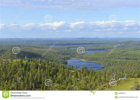 view of forest habitat royalty free stock photograph in northern finland stock image image of margins landscape