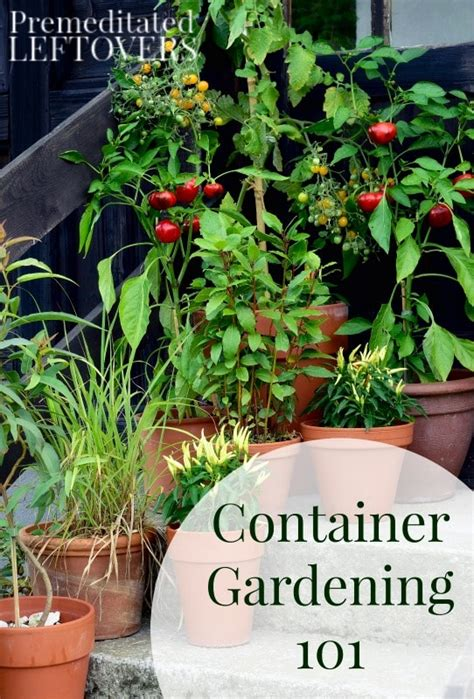 Container Gardening 101 by Container Gardening 101