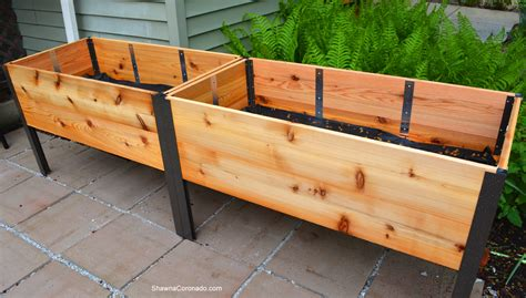 Elevated Planter Box by How To Plant An Elevated Garden Bed Coronado