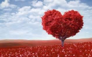 love tree hd wallpaper love valentine wallpapers