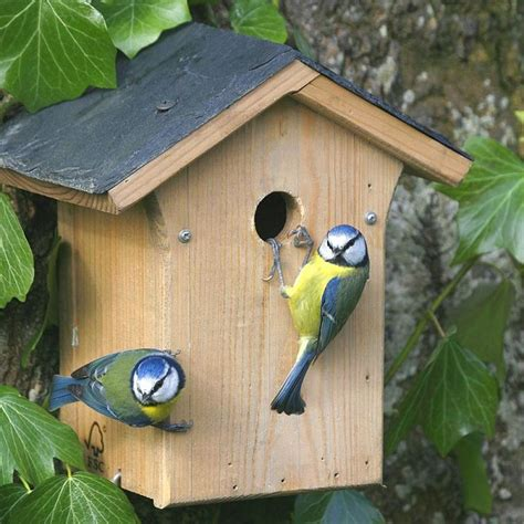 102 best nest boxes bird houses images on pinterest