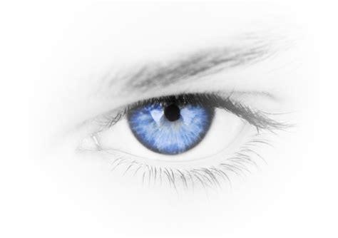 sullivan optometry p c eyeglasses contact lenses