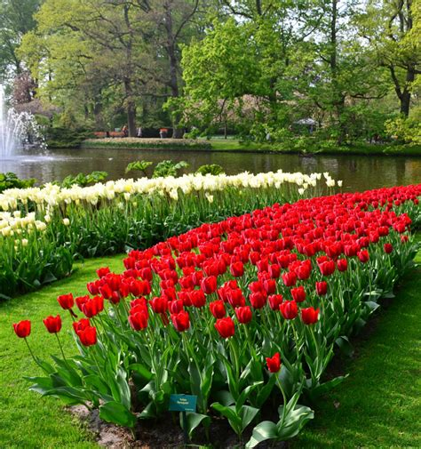 Ga Botanical Gardens Atlanta Botanical Garden Flora Concerts