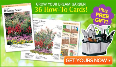 Gardening Made Easy Cards Discover How Easy Gardening Can Be Includes 36 How To