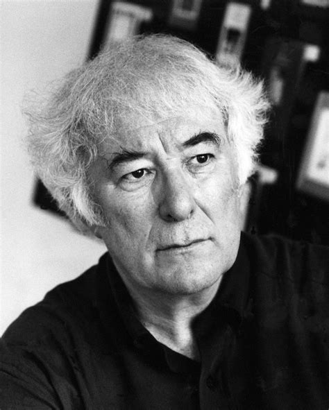 after ireland writing the nation from beckett to the present books seamus heaney the nobel prize winning poet whose