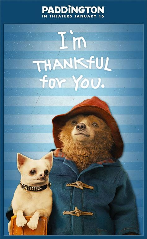 paddington bear all day 81 best movies images on paddington bear movie posters and film posters